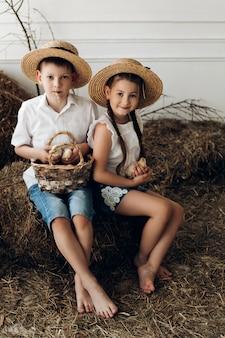 Frère et sœur dans des chapeaux de foin gardant de petits poussins