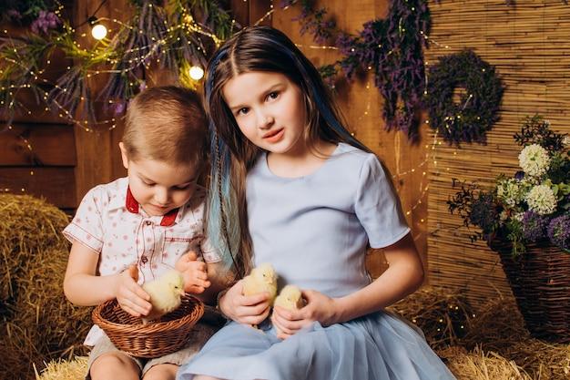 Frère et sœur à la ferme rient et regardent les poulets