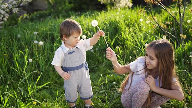 Frère et sœur s'amusent à jouer avec des pissenlits blancs jaunes et moelleux en fleurs dans un jardin printanier chaud