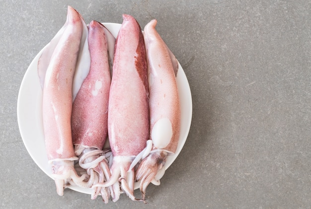 Fresh squid
