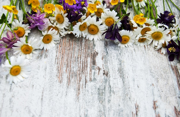 Frontière avec fleurs sauvages