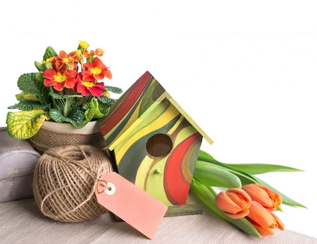 Frontière de pâques avec des tulipes orange et des primevères sur blanc