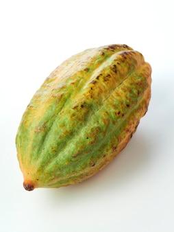 Fruit de cacao sur fond blanc