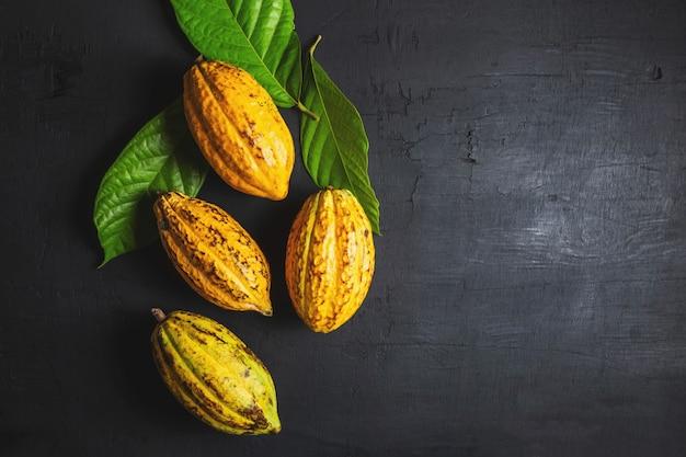 Fruit de cacao frais sur fond noir