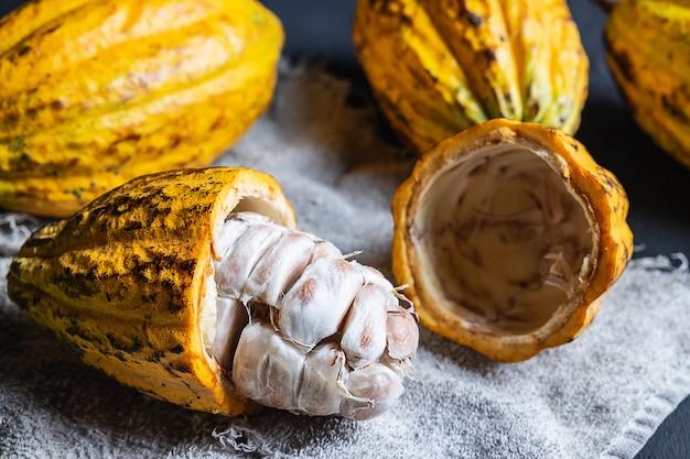 Un fruit de cacao à moitié coupé se bouchent