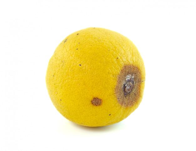 Fruit de citron pourri isolé sur blanc