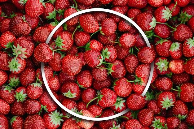 Fruit fond beaucoup de fraises cadre vue blanche
