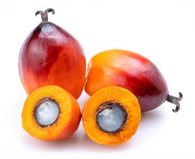 Fruit d'huile de palme frais isolé sur fond blanc.