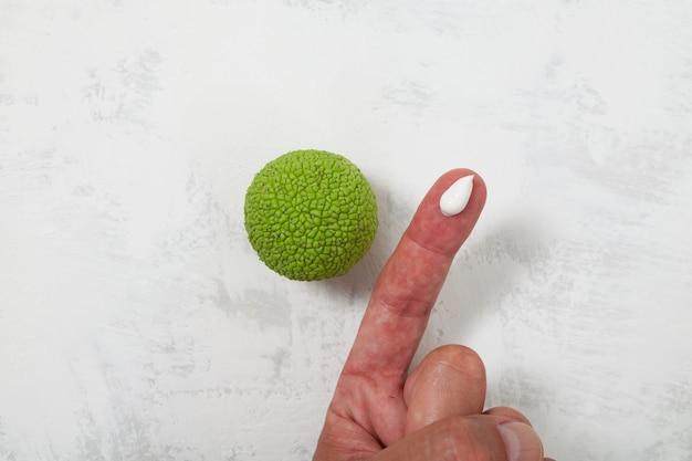 Le fruit de maclura ou la pomme d'adams est utilisé en cosmétologie pour la préparation de crèmes et d'onguents
