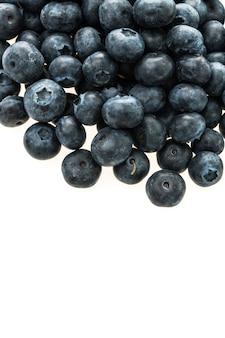 Fruit de myrtille