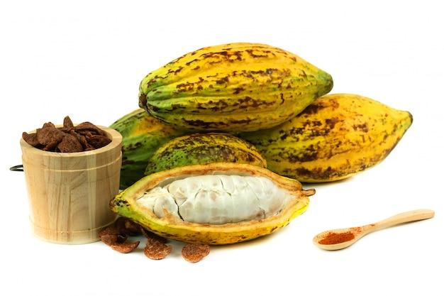 Fruits de cacao frais avec craquement du cacao (produits de cacao)
