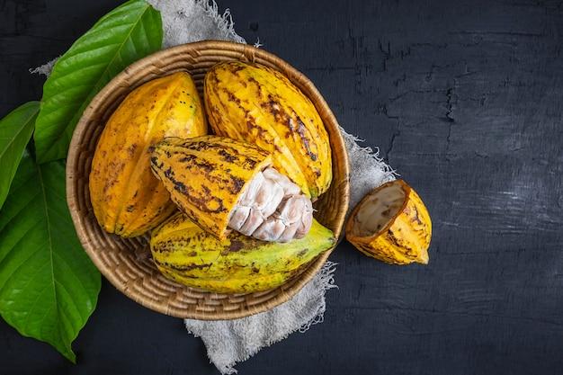 Fruits de cacao frais dans le panier