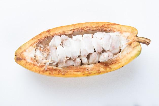 Fruits de cacao mûrs coupés sur fond blanc.