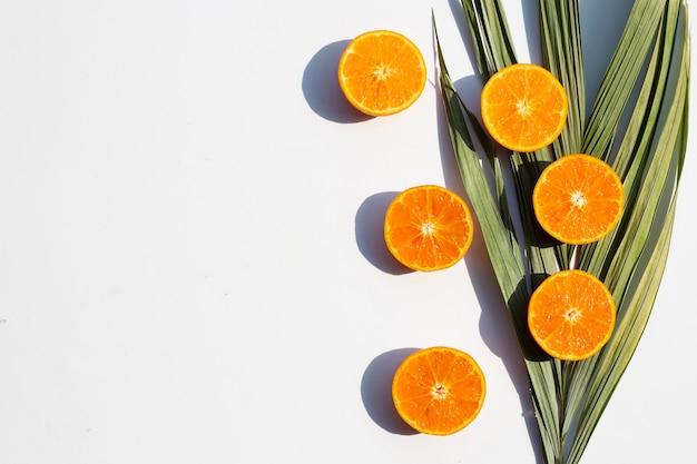 Fruits et feuilles orange