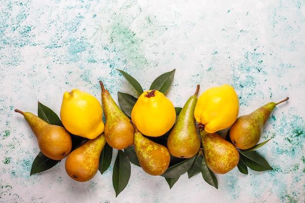 Fruits frais de la ferme biologique, poires, coings, vue de dessus