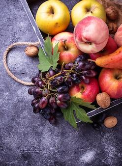 Fruits frais. pommes, poires, raisins et pêches