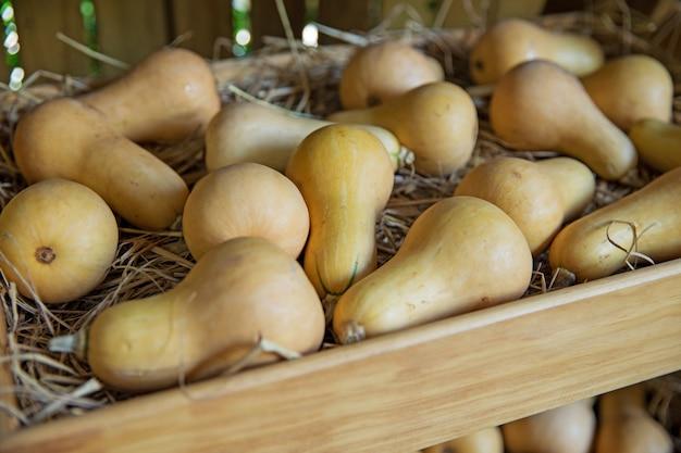 Fruits frais et sains à la ferme pour la vente sur un marché