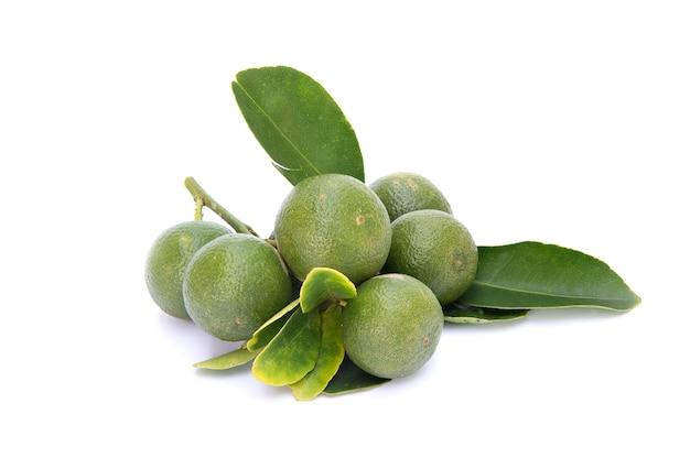 Fruits kumquat verts avec des feuilles sur blanc