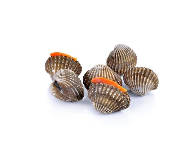 Fruits de mer de coques fraîches sur blanc