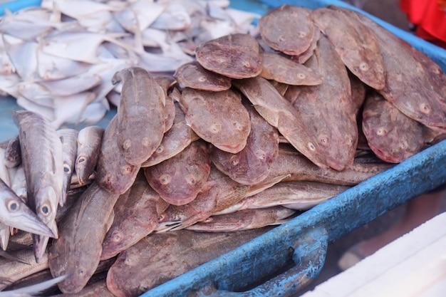 Fruits de mer frais au marché aux poissons de bandar abbas, en iran.