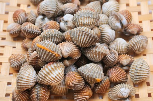 Fruits de mer frais