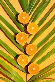 Fruits orange frais sur des feuilles de palmier tropical