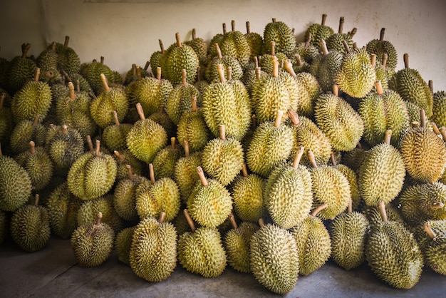 Fruits tropicaux durian à vendre au marché en été - exportation de fruits thaïlandais