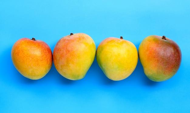 Fruits tropicaux, mangue sur fond bleu.