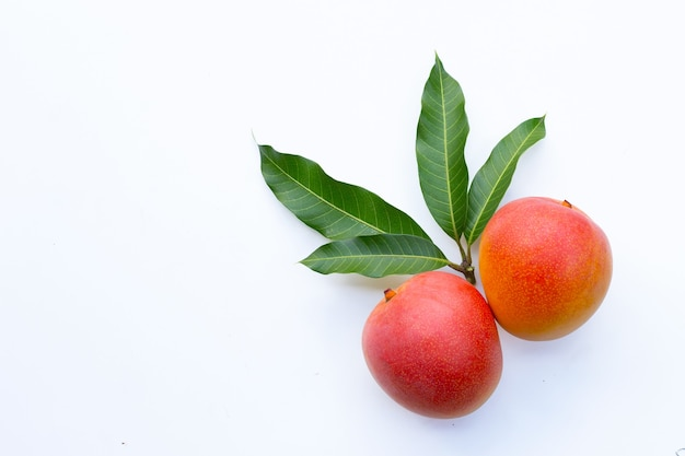 Fruits tropicaux, mangue sur mur blanc.