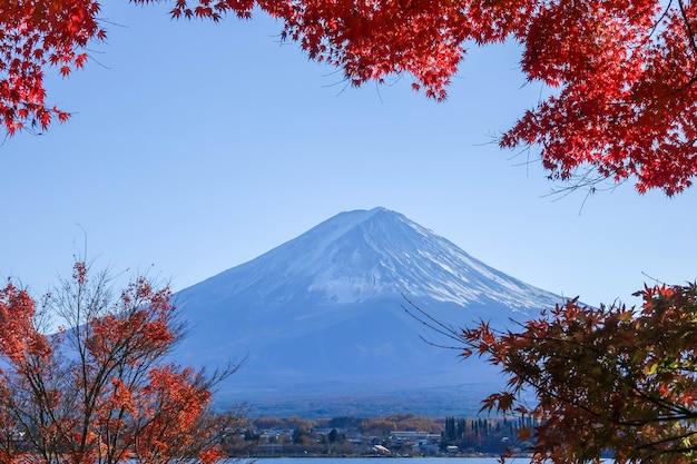 Fuji montagne en automne