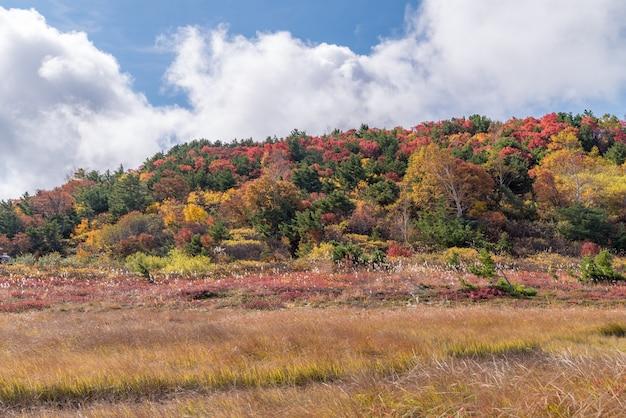 Fukushima mountain bandai automne automne
