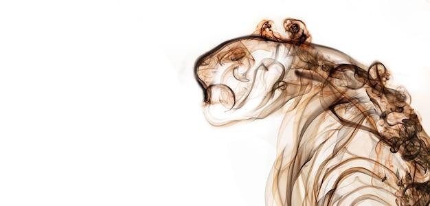 La fumée est le visage de tigre de l'art. symbole du zodiaque de 2022