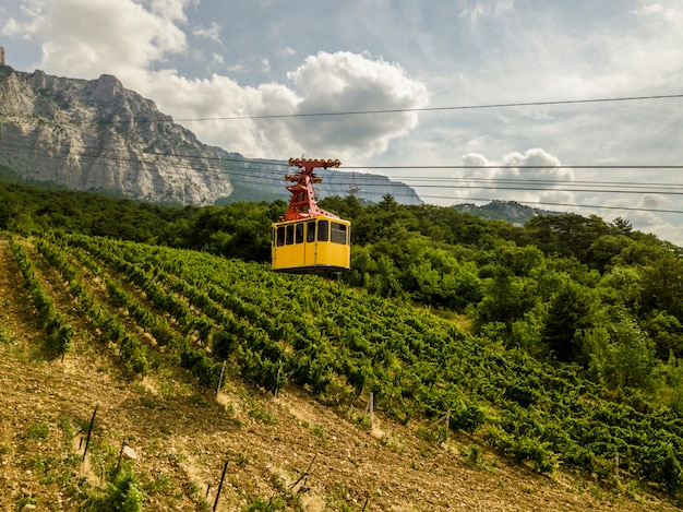 Un funiculaire à cabine jaune transporte les gens jusqu'au sommet de la montagne pendant la saison estivale.