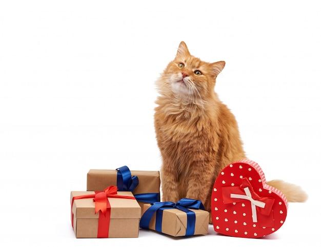 Funny cat de gingembre adulte assis au milieu de boîtes enveloppées dans du papier brun et attachées avec un ruban de soie