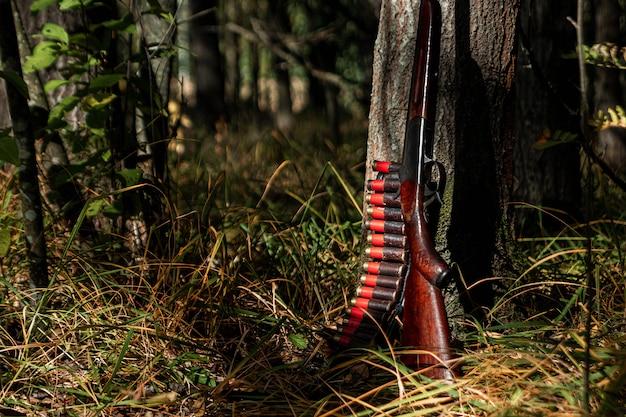 Fusil de chasse et cartouches dans la forêt d'automne