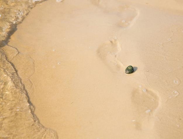 Galet sur fond de plage