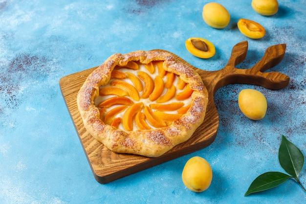 Galettes d'abricots rustiques faites maison avec des fruits d'abricots biologiques frais.