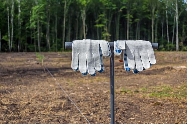 Gants de travail propres et suspendus à l'outil pour planter des plants d'arbres, avant la plantation en forêt