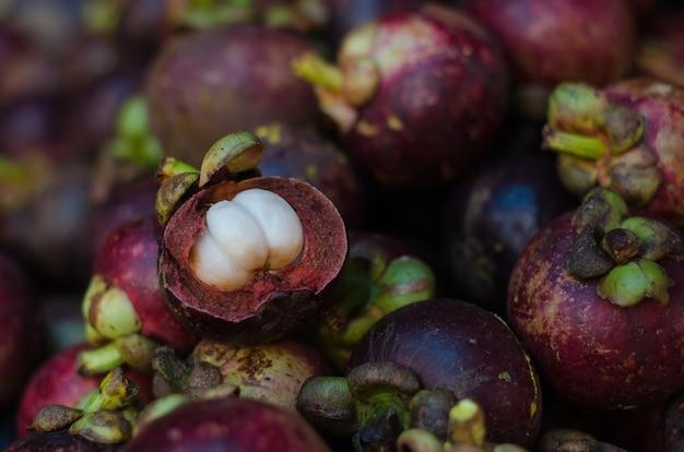 Garcinia mangostana tropical mangoustan