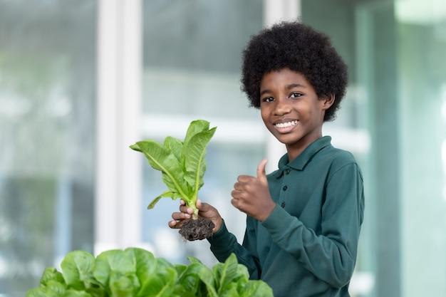 Un garçon africain aux cheveux noirs et bouclés montre une salade fraîche récoltée dans son jardin