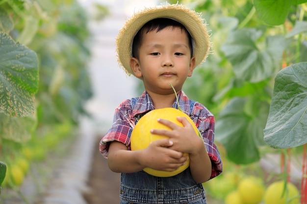 Garçon asiatique et melon doré dans une serre biologique