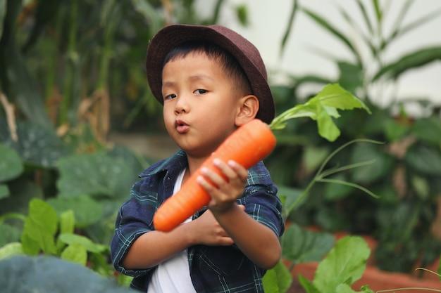 Un garçon asiatique porte une carotte qu'il a ramassée dans une parcelle de son jardin.