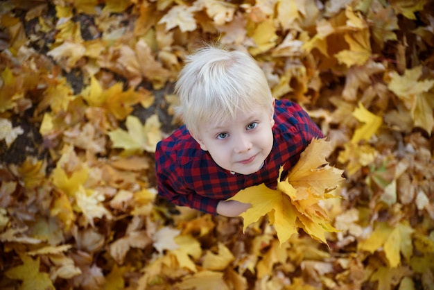 Garçon blond avec un bouquet de feuilles d'automne se dresse et lève les yeux