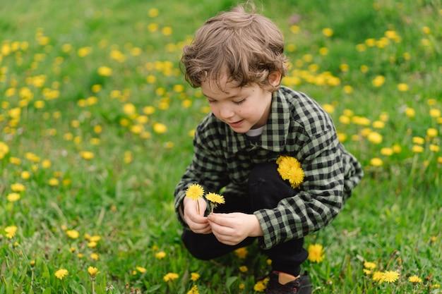 Garçon bouclé avec des fleurs de pissenlit