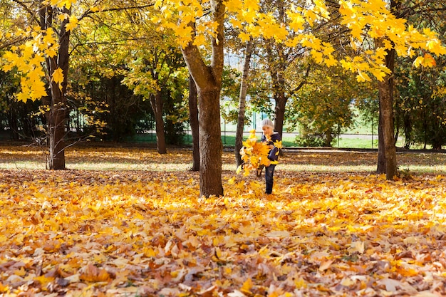 Un garçon donne un coup de pied au feuillage à l'automne lors d'une promenade dans le parc, des érables aux feuilles jaunes poussent autour