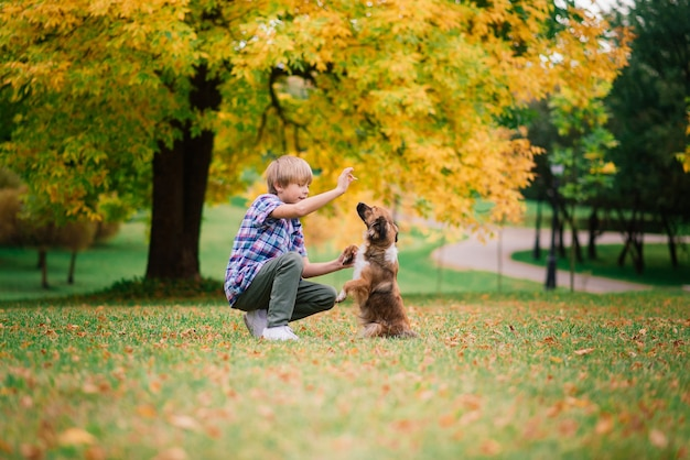 Garçon étreignant un chien et plyaing avec dans le parc de la ville d'automne
