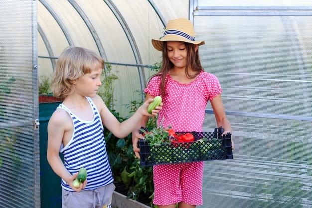 Un garçon et une fille sortant d'une serre avec un panier de légumes frais