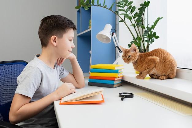 Garçon grand angle avec lecture de chat