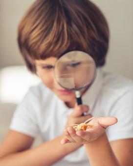 Garçon joue avec insecte jouet et loupe et souriant