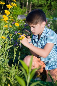 Garçon à la loupe dans le jardin d'été